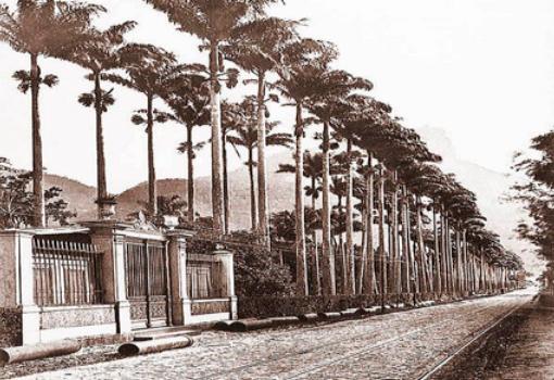 Pórtico do Jardim Botânico. C. 1890. GUTIERREZ, Acervo: MHN